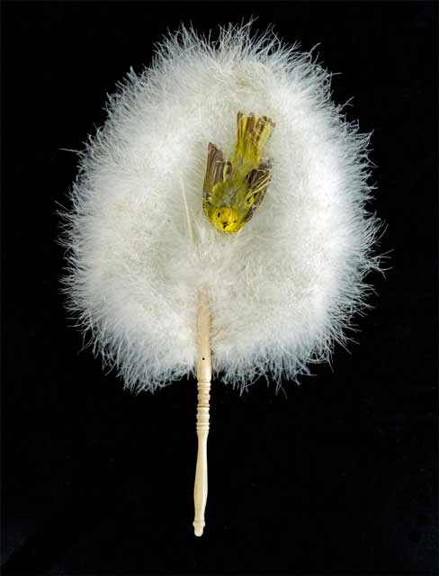 """Ostrich feather fan with inserted """"real"""" goldfinch"""