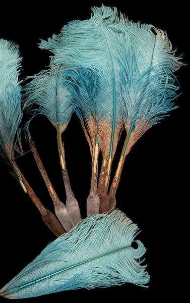 ostrich-feather-fan-for-web-2
